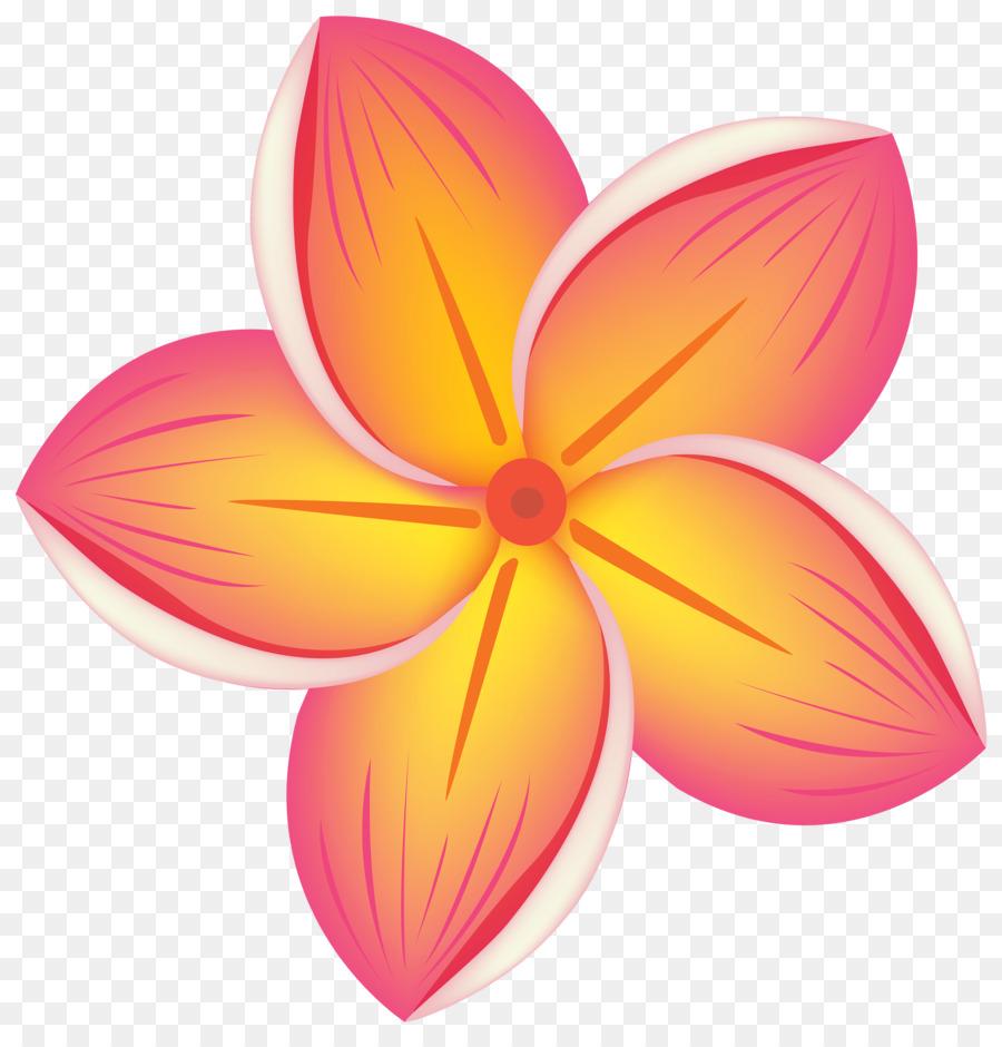 Flor Flores Cor De Rosa Blog Png Transparente Grátis
