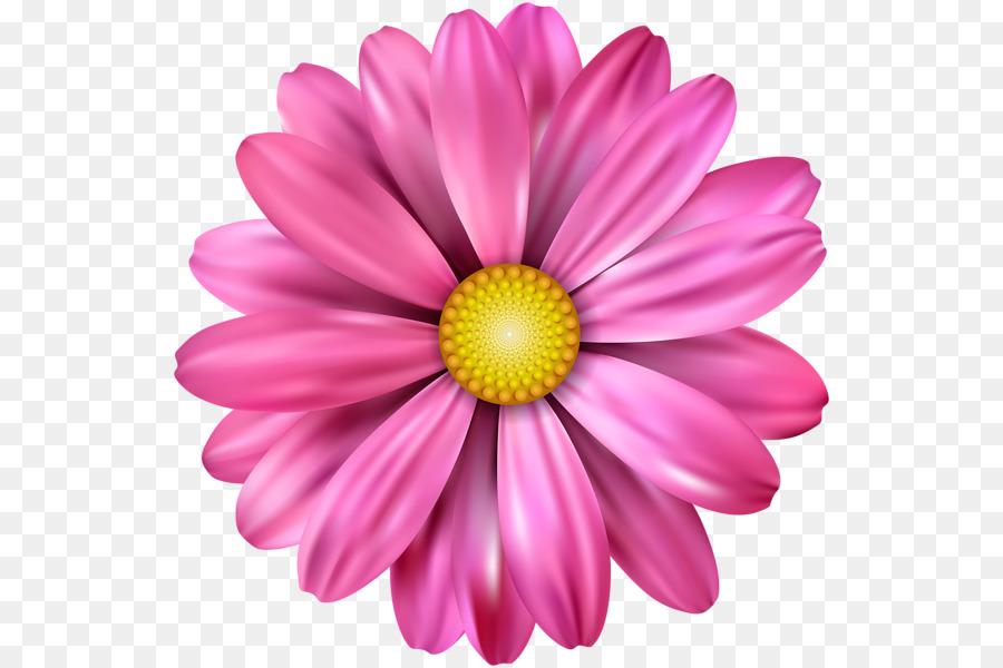 Flor Pétala Desenho