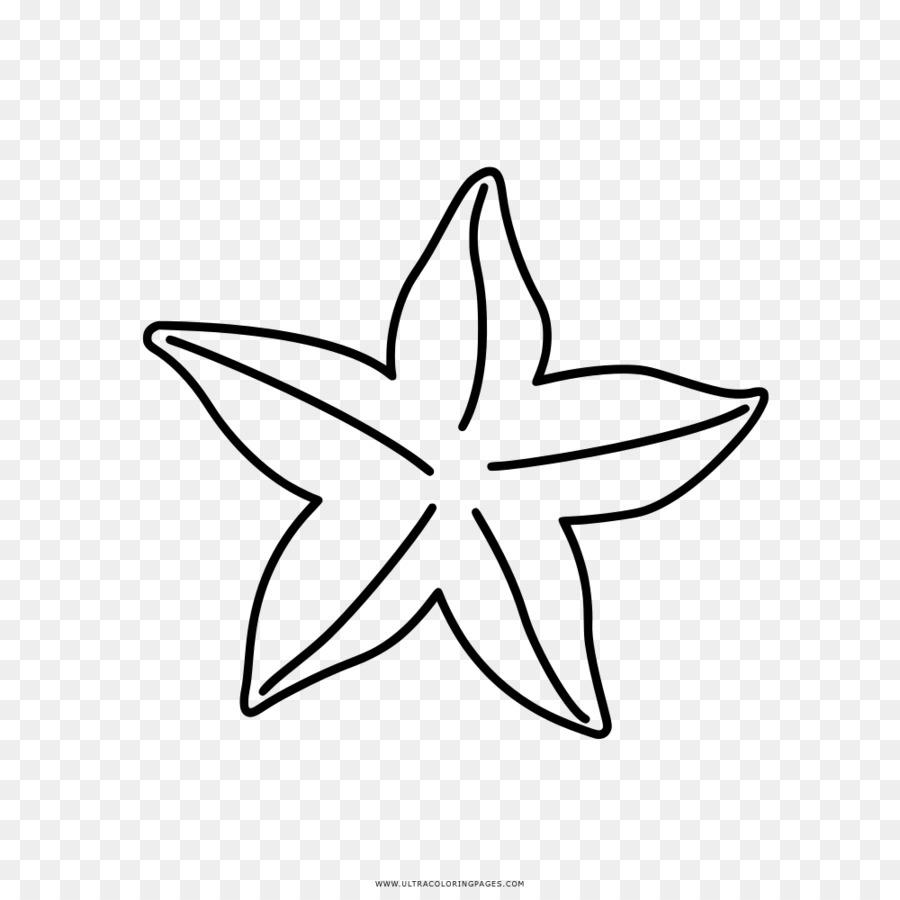 Livro De Colorir Desenho Estrela Do Mar Png Transparente Gratis