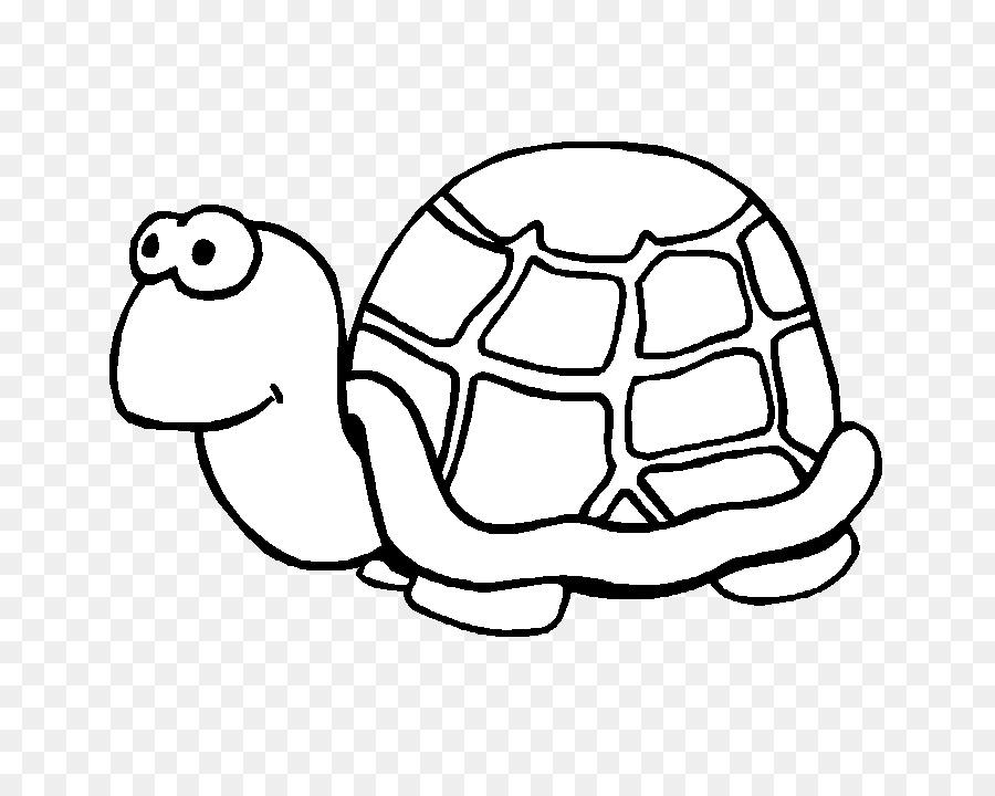 Tartaruga Desenho Tartaruga Marinha Png Transparente Gratis