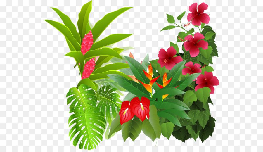 Flor Floresta Tropical Desenho Png Transparente Grátis