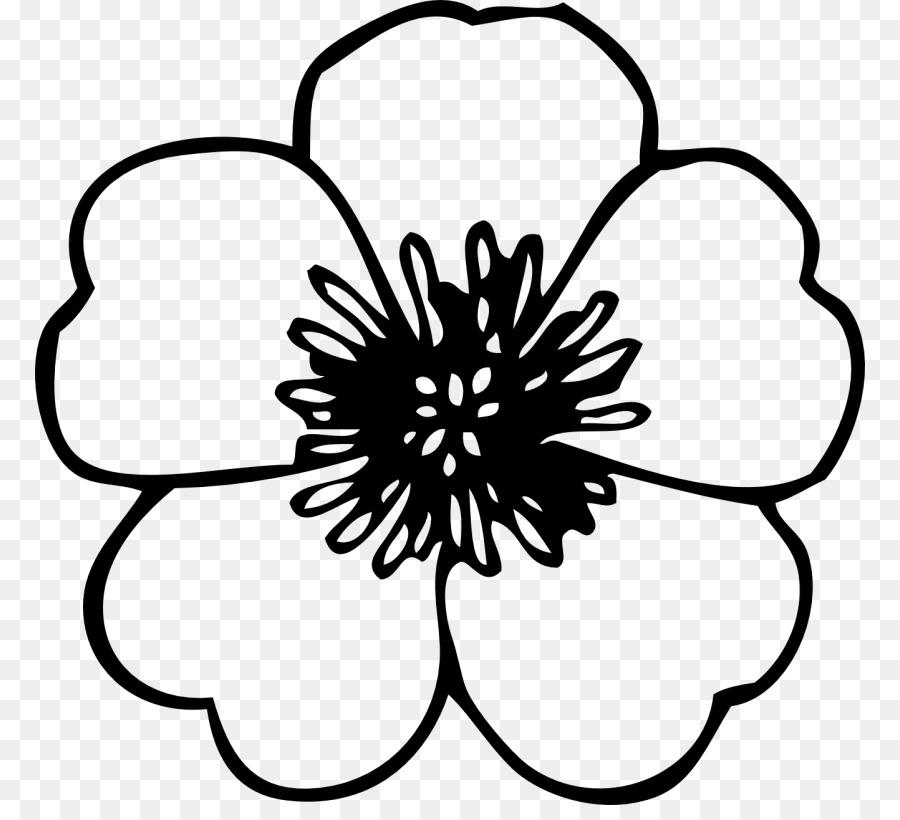 Flor Desenho Preto E Branco Png Transparente Grátis